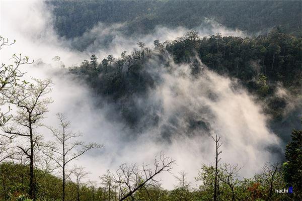 Với độ cao 2.000 m so với mực nước biển, đây là nơi có thể dễ dàng cho du khách cơ hội ngắm những biển mây mà không tốn quá nhiều sức như leo núi.
