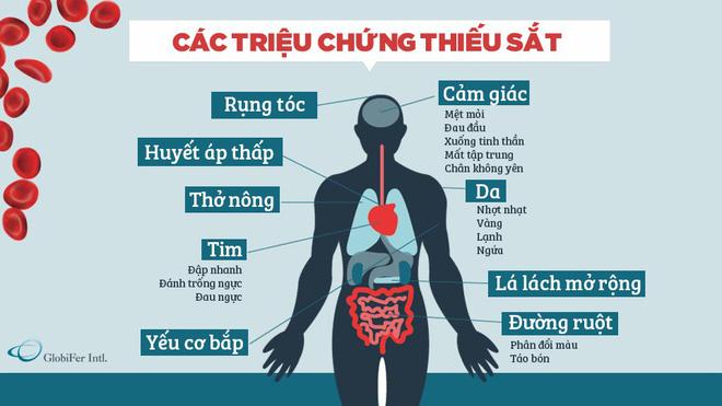Nếu có các triệu chứng này, rất có thể bạn đang bị thiếu sắt