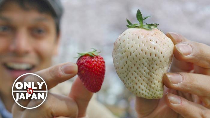 Đi chơi Nhật Bản ăn gì cho ngon? (phần 2) - Ảnh 2.