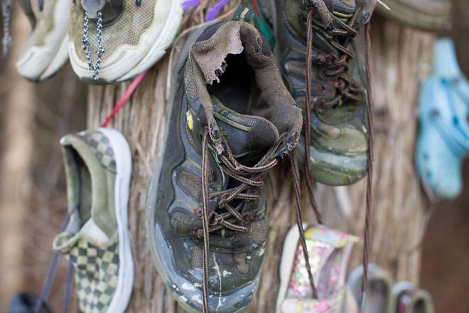Khu rừng bí ẩn ở Canada: Hàng trăm đôi sneakers bị đóng đinh lên cây, không ai biết lý do vì sao - Ảnh 22.