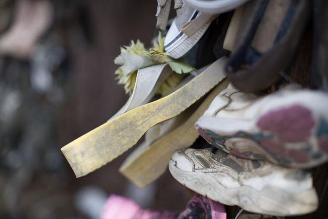 Khu rừng bí ẩn ở Canada: Hàng trăm đôi sneakers bị đóng đinh lên cây, không ai biết lý do vì sao - Ảnh 13.