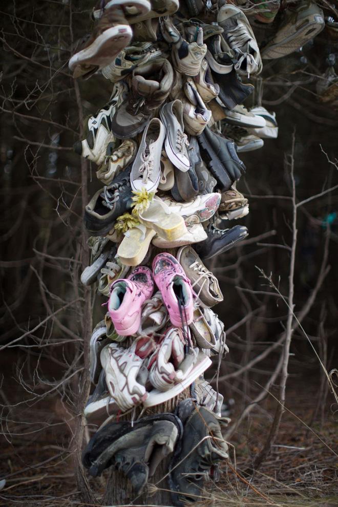 Khu rừng bí ẩn ở Canada: Hàng trăm đôi sneakers bị đóng đinh lên cây, không ai biết lý do vì sao - Ảnh 24.