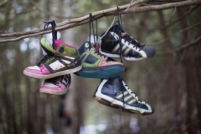 Khu rừng bí ẩn ở Canada: Hàng trăm đôi sneakers bị đóng đinh lên cây, không ai biết lý do vì sao - Ảnh 6.