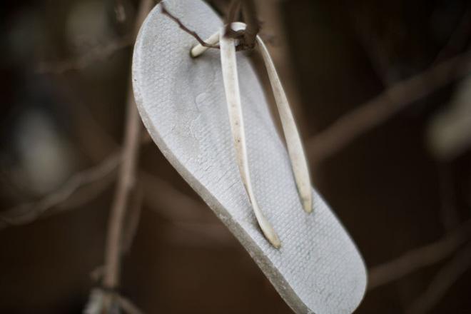 Khu rừng bí ẩn ở Canada: Hàng trăm đôi sneakers bị đóng đinh lên cây, không ai biết lý do vì sao - Ảnh 8.