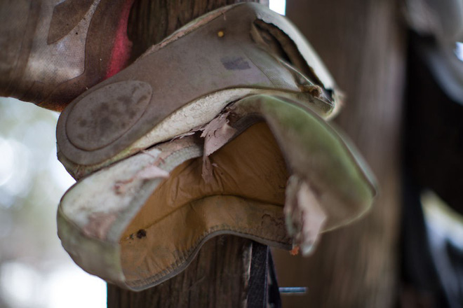 Khu rừng bí ẩn ở Canada: Hàng trăm đôi sneakers bị đóng đinh lên cây, không ai biết lý do vì sao - Ảnh 9.