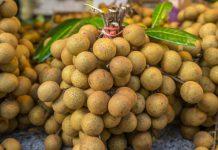 Nhãn được xếp hạng là 1 trong 10 loại hoa quả ngon nhất của Việt Nam, được xuất khẩu ra nước ngoài.