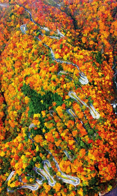 Bức tranh mùa thu ở con đường nguy hiểm bậc nhất Nhật Bản - 2