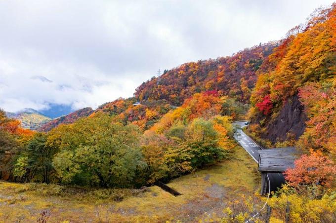 Bức tranh mùa thu ở con đường nguy hiểm bậc nhất thế giới - 6