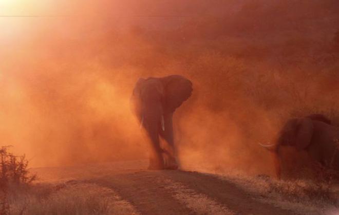 30 khoảnh khắc đẹp đến nghẹt thở từ vòng chung kết Cuộc thi ảnh Du lịch Địa lý Quốc gia 2019 - Ảnh 10.