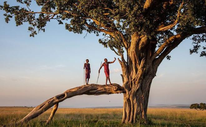 30 khoảnh khắc đẹp đến nghẹt thở từ vòng chung kết Cuộc thi ảnh Du lịch Địa lý Quốc gia 2019 - Ảnh 12.