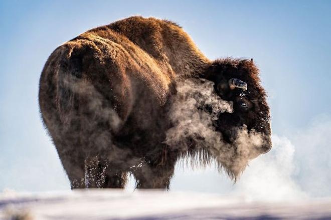 30 khoảnh khắc đẹp đến nghẹt thở từ vòng chung kết Cuộc thi ảnh Du lịch Địa lý Quốc gia 2019 - Ảnh 18.