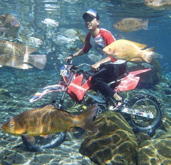 Dân du lịch Indonesia đổ xô đến sống ảo dưới nước tại ngôi làng có một không hai này - Ảnh 4.