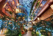 Quán cà phê vườn trên đường Trương Công Định, quận Tân Bình là một trong những điểm đến ưa thích của người Sài Gòn dịp Giáng sinh. Quán trông như một khu vườn nhiệt đới thu nhỏ, thắp đèn led lấp lánh vào ban đêm, cho bạn đủ góc sống ảo.