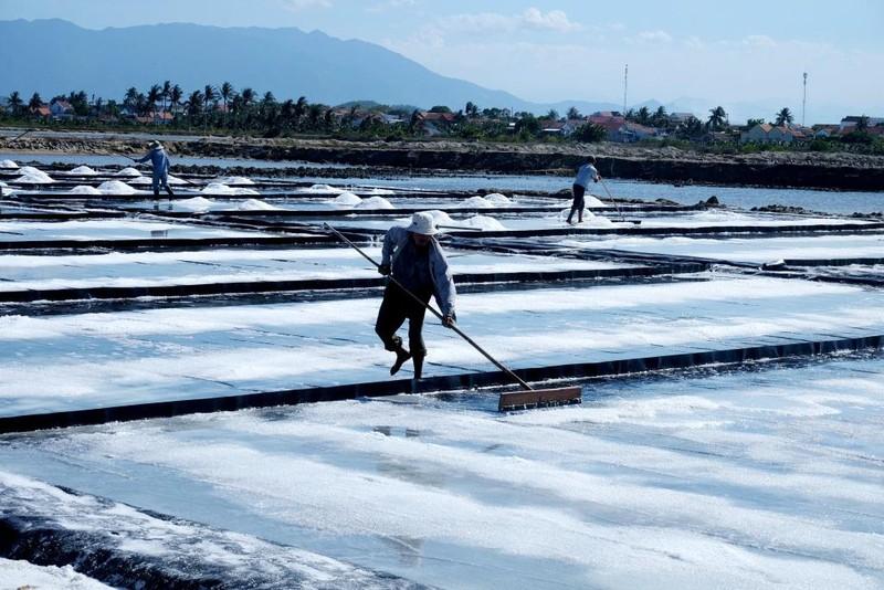 Cảnh đẹp nao lòng ở cánh đồng muối Ninh Diêm, Khánh Hòa - ảnh 8
