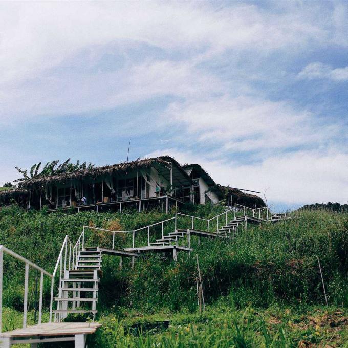The Wilder-nest