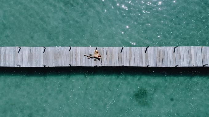 Cầu gỗ từ trên cao nhìn xuống. Ảnh: Cường Khỉ